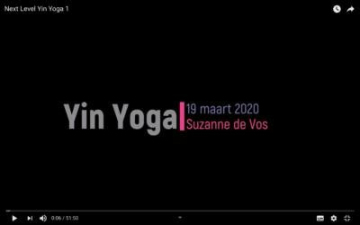Next Level Yin Yoga 1