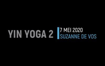 Next Level Yin Yoga 2